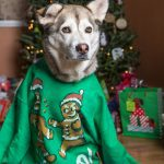 Project 52 Week 51: Ugly Sweaters