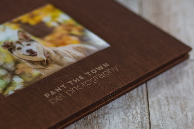 professional photo book