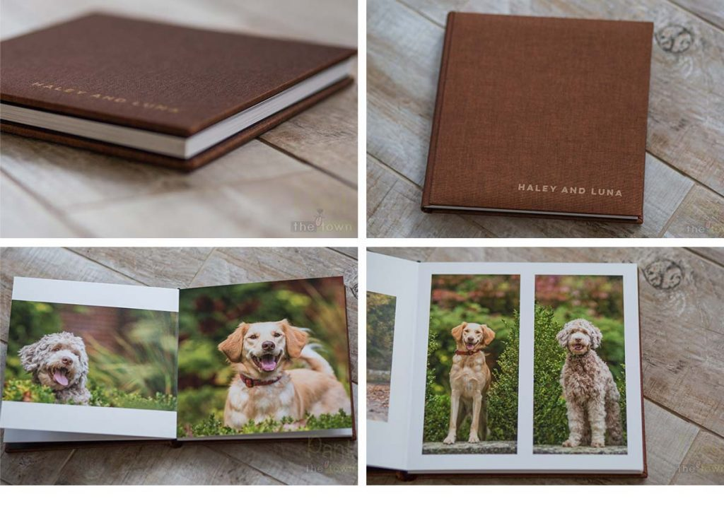 Pet Photography Album from Pant the Town