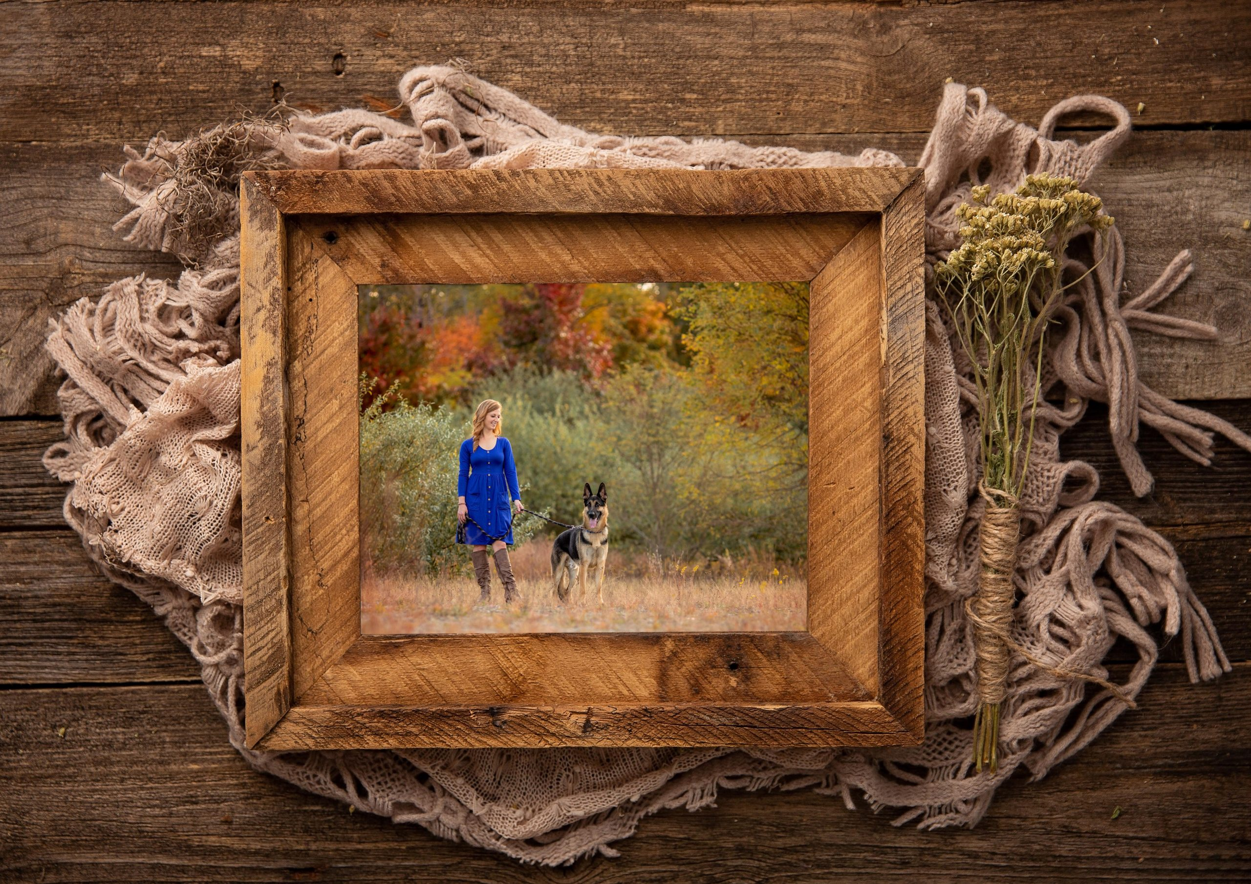 Pets and People Barnwood Framed Print