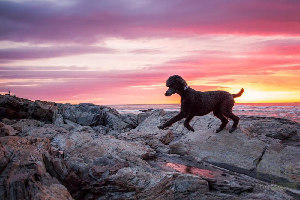 Dawn at Wallis Sands Beach