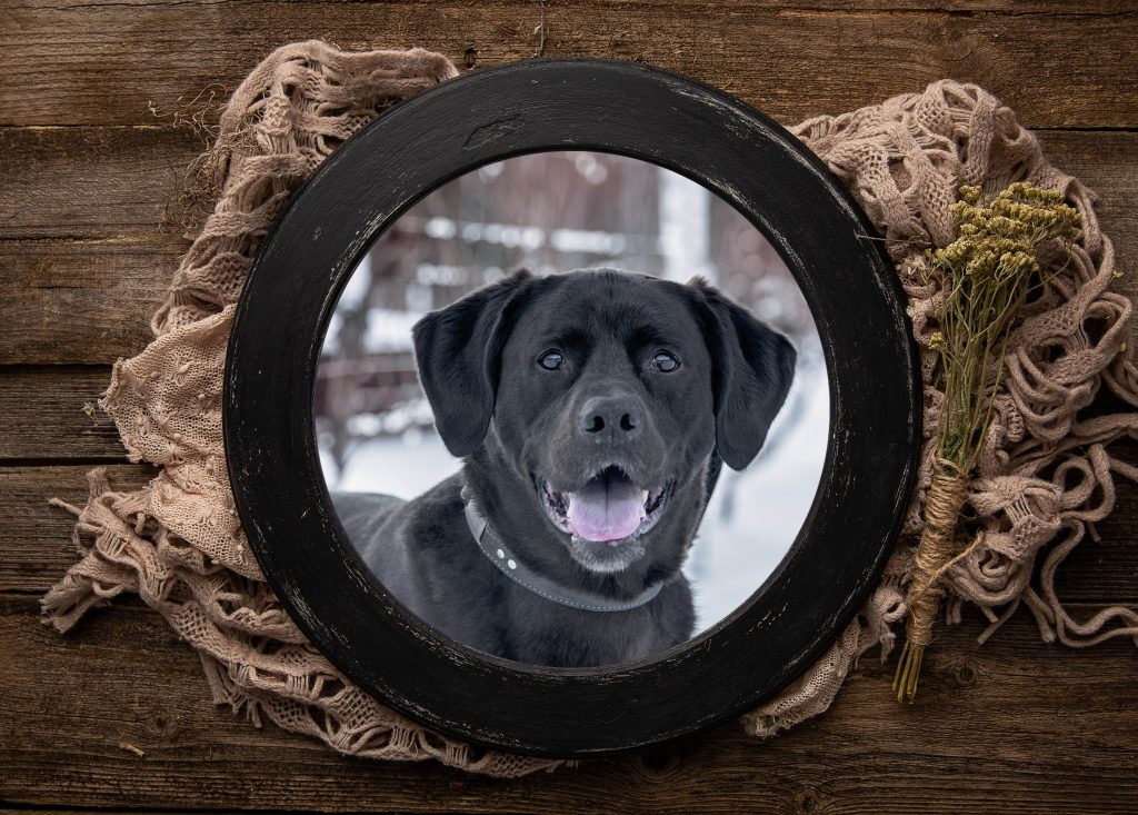 Rustic Round Frame