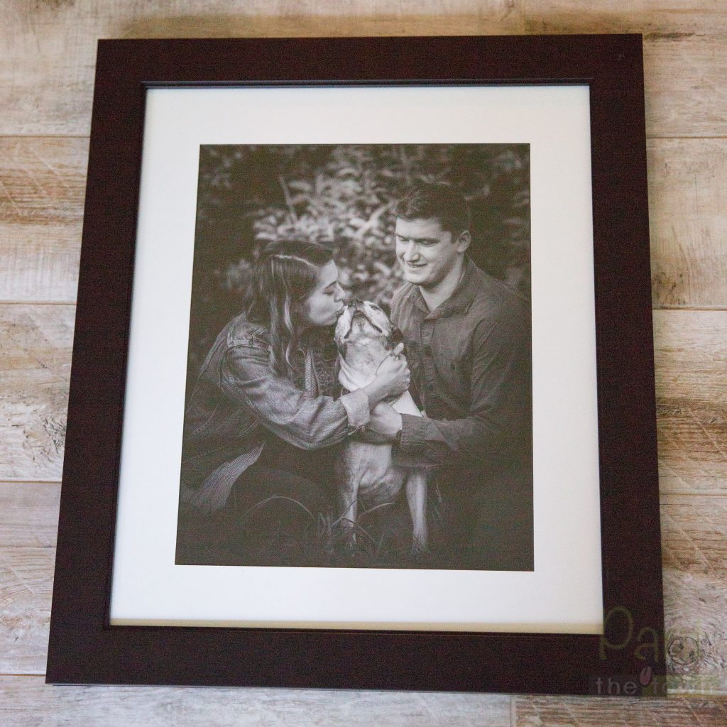 Framed print from a pet memory session