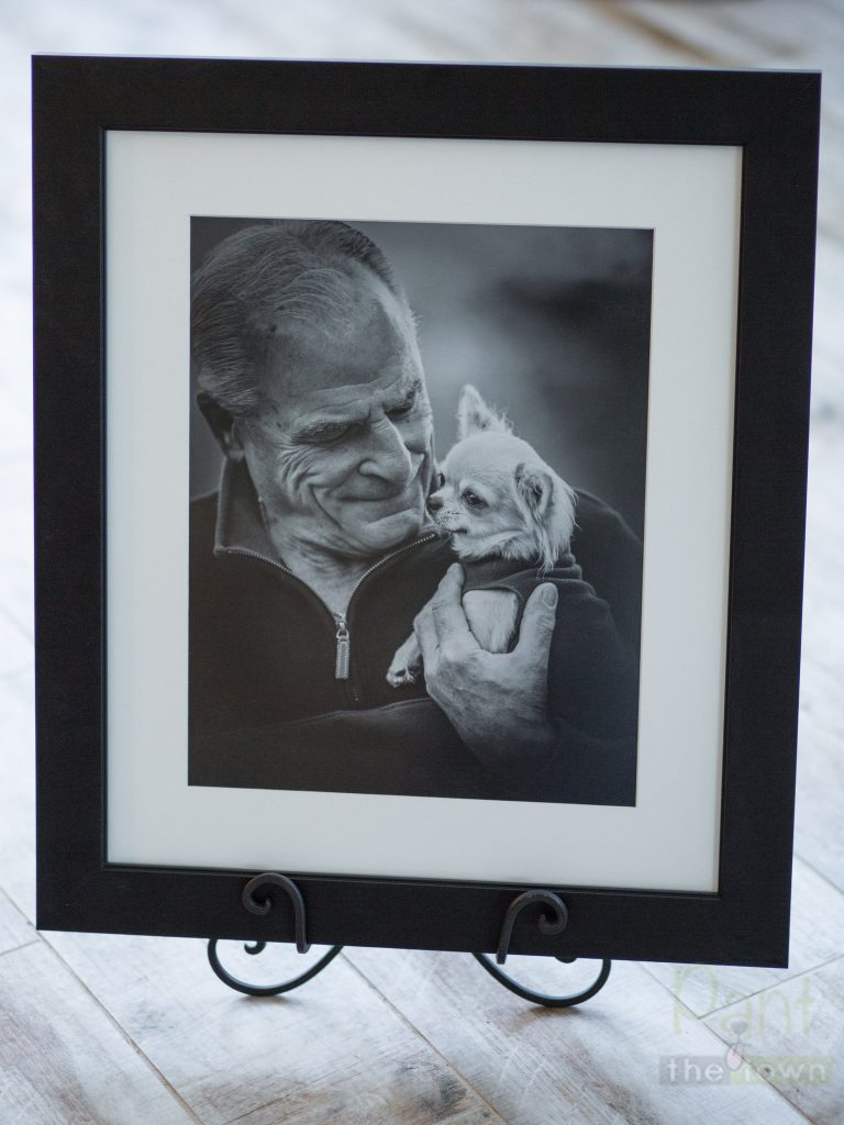 MA Pet Photography Framed Print