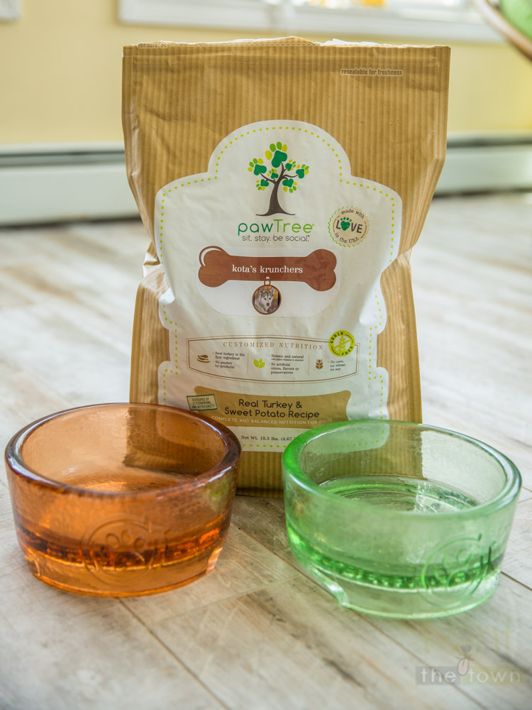 Pawtree custom dog food