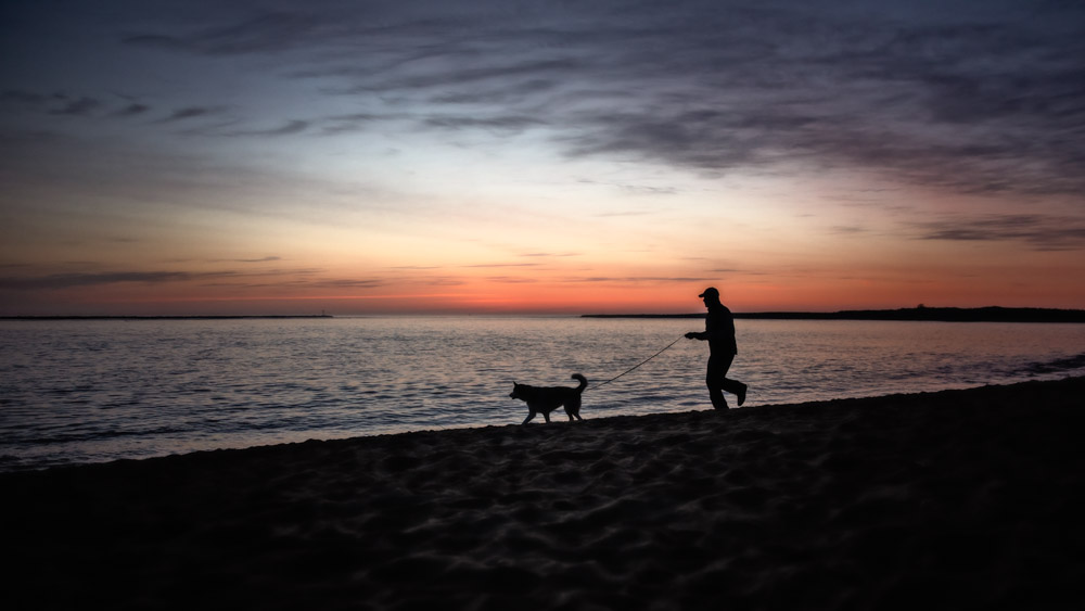 Dad and dog running on the beach