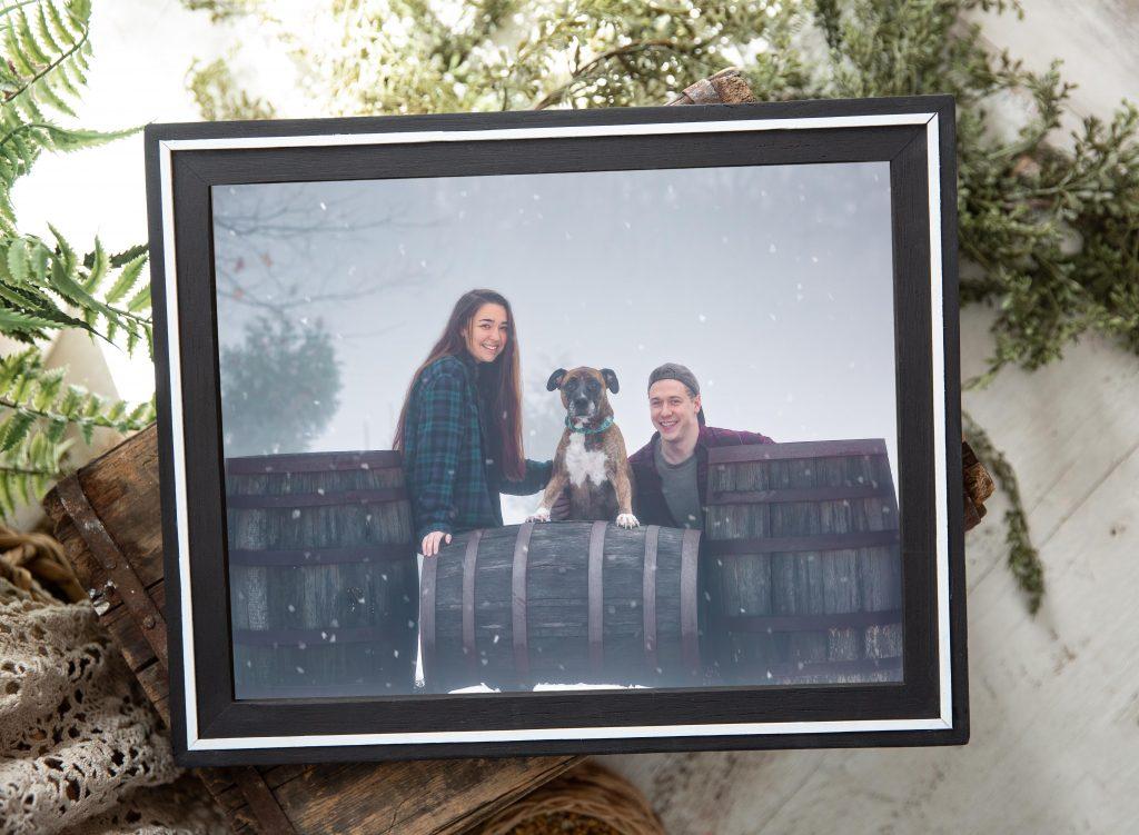 Vineyard Memory Dog Photo Session
