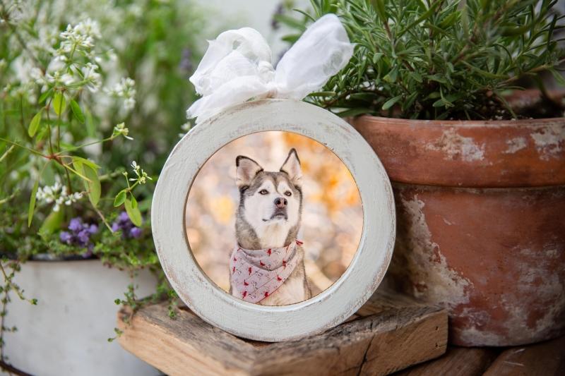 White Barnwood Ornament