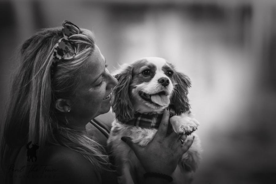 Irresistible Dog Photos Bond