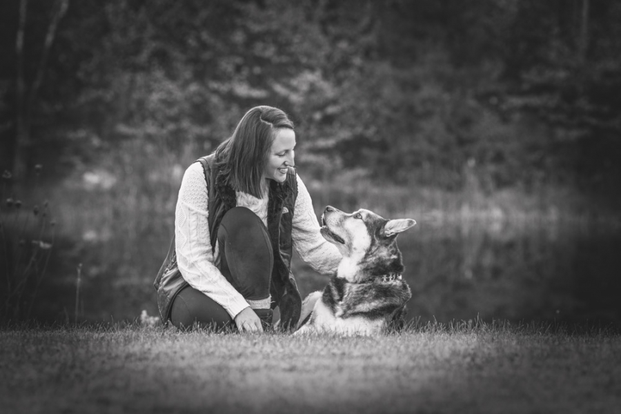 Memory Pet Photography Session