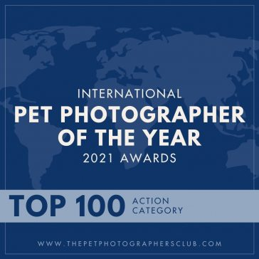 Pet Photographer of the Year