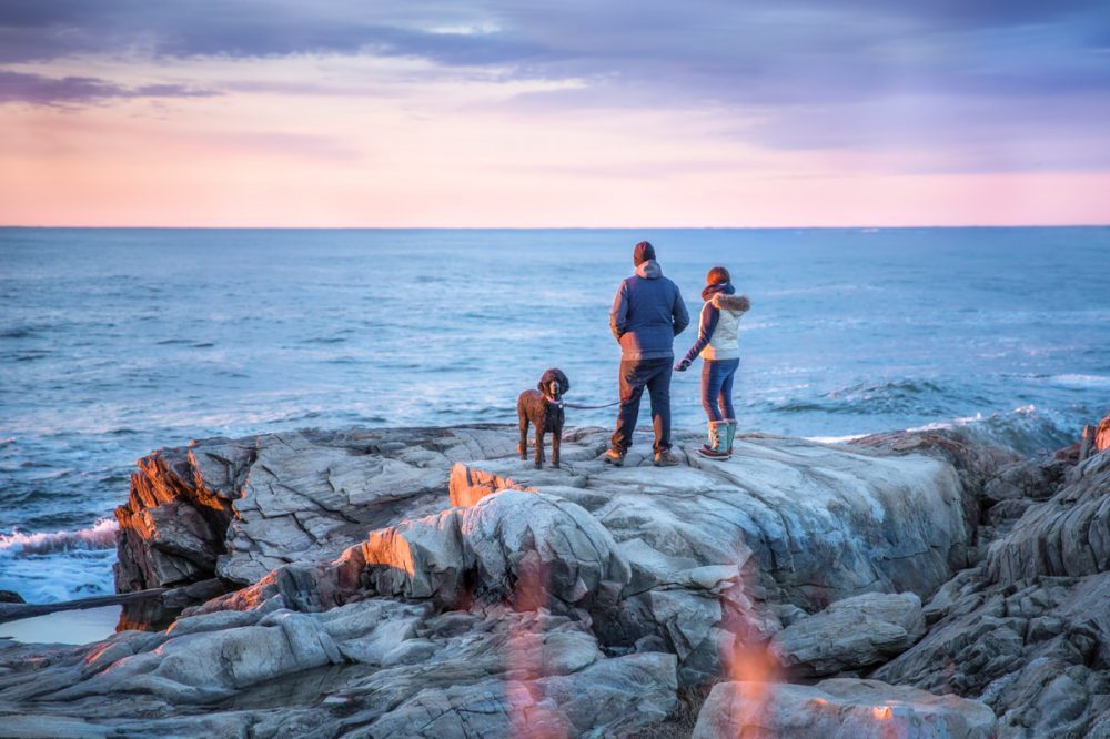 Sunrise Pet Photo Session at Wallis Sands Beach in Rye, NH