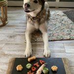 Healthy Dog Barkuterie Board